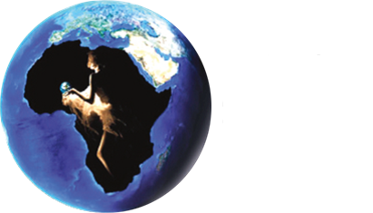 Africa Fashion Reception